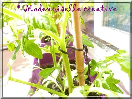 http://mademoiselle.creative.cowblog.fr/images/P1140442.jpg