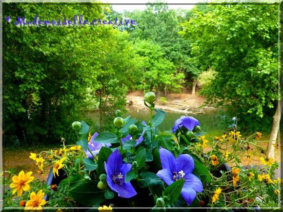 http://mademoiselle.creative.cowblog.fr/images/P1140597.jpg